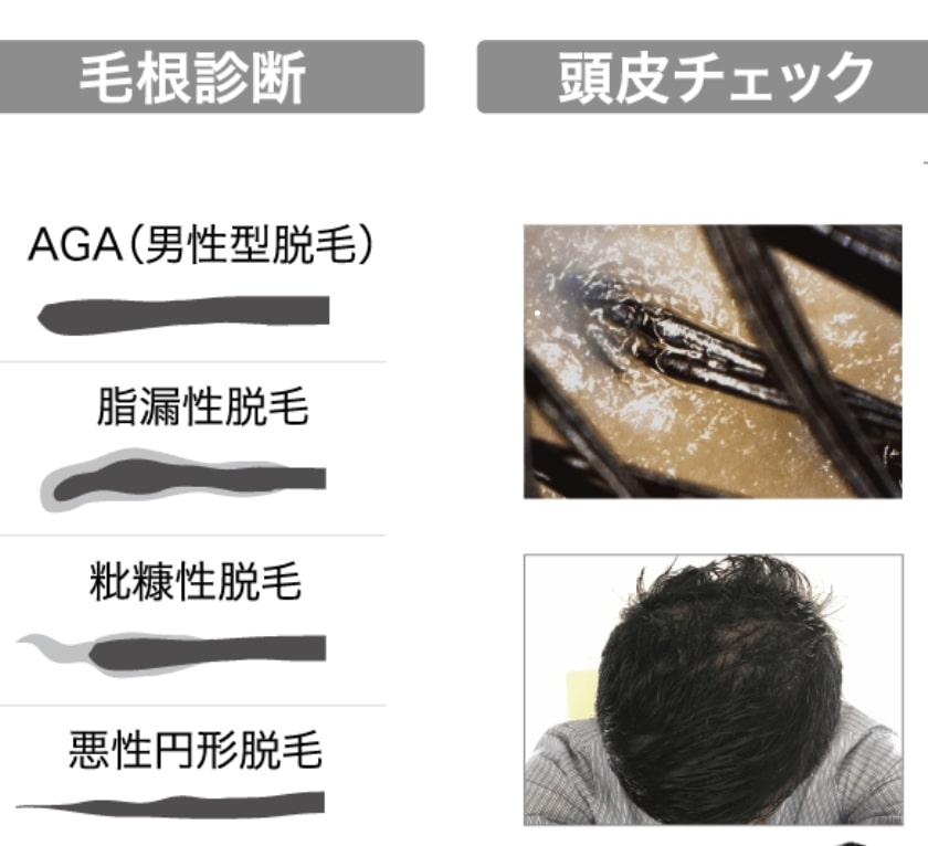 髪元気ナビの特徴や違いは?